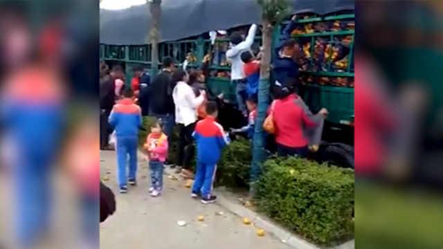 货车追尾30吨橘子遭哄抢只收到9千