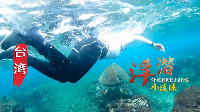 台湾:去小琉球潜水,与海龟同游!