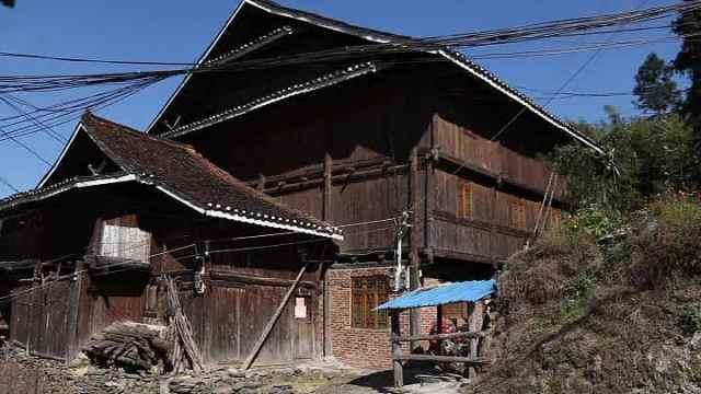 有趣!侗寨人牛合住:1楼养牛2楼住人
