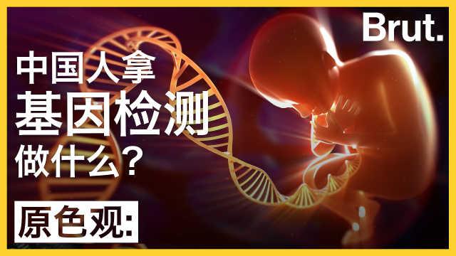 中国人拿基因检测做什么?