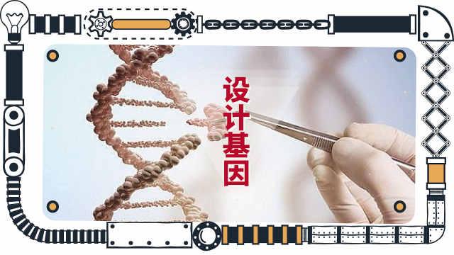 为什么基因编辑的技术要被质疑?