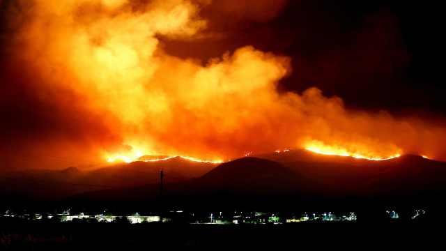 在野外遇到森林火灾怎么办?