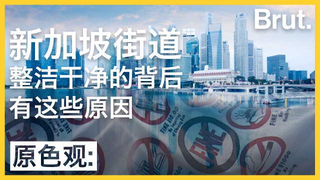 新加坡的街头为何那么整洁干净?