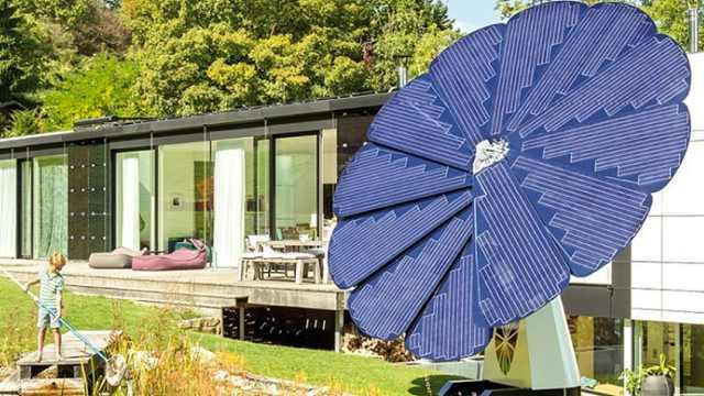 后院种朵向日葵,就会有用不完的电