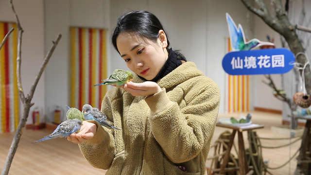 杭州這個室內動物園300只萌寵來襲