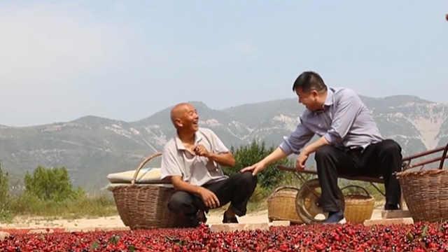 学习V客:周善红的产业扶贫经