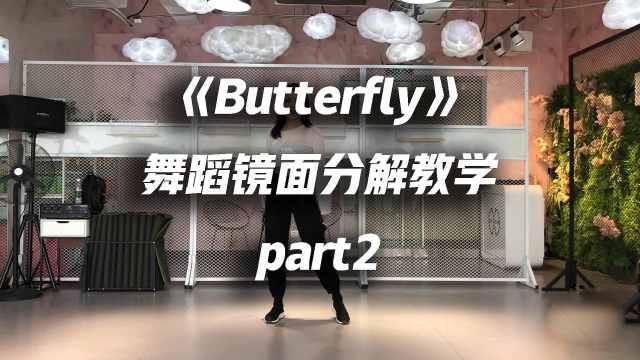 本月少女-《Butterfly》舞蹈教学p2
