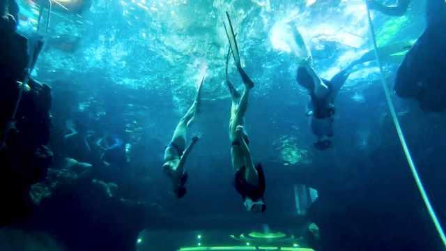 初学者学习潜水的3个必知安全规则