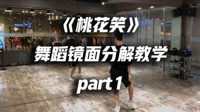 《桃花笑》舞蹈镜面分解教学part1