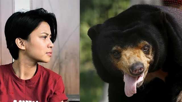女星圈养马来熊惹争议,否认虐待