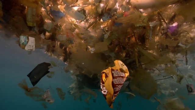 塑料污染有多严重?