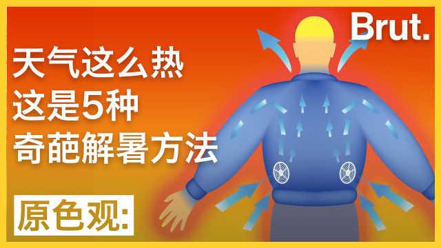 高温之下这里有5种奇葩避暑方法