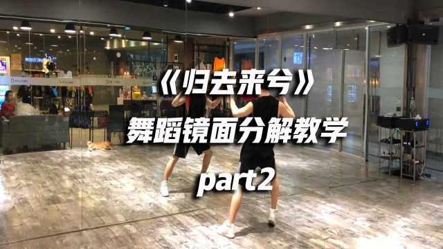 《归去来兮》舞蹈镜面分解教学p2