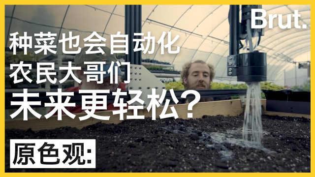 人工智能种菜:农民们未来更轻松?